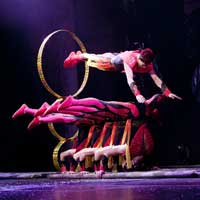 Cirque Shanghai: Dragon's Thunder Chicago Navy Pier