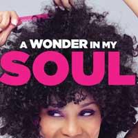 A Wonder In My Soul