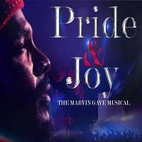 Pride and Joy: The Marvin Gaye Musical