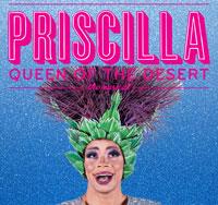 Priscilla, Queen of the Desert