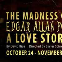 The Madness of Edgar Allen Poe: A Love Story