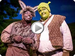 Shrek The Musical Chicago Shakespeare